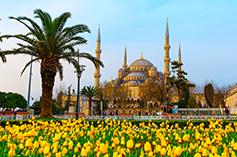 همه چیز درباره منطقه سلطان احمد در تور استانبول