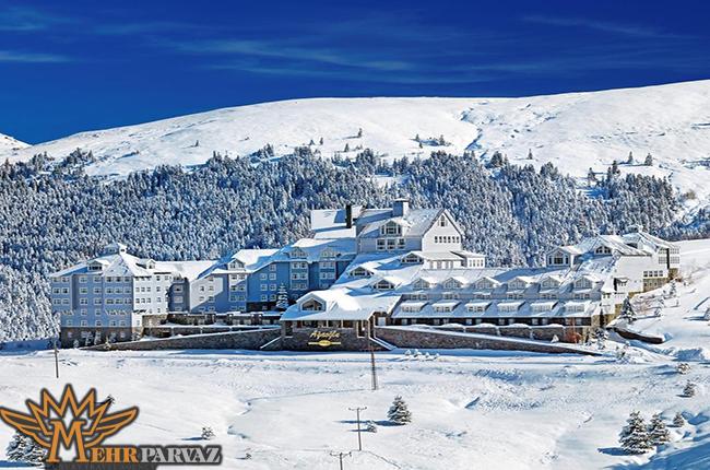 نمای زیبا از ساختمان ها و درختان در برف