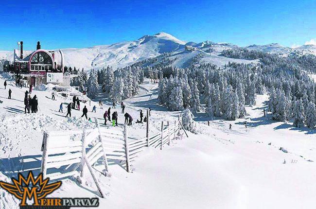 نمای زیبا از کوه ها و درختان در برف و توریست ها